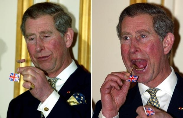 Royal Highness Charles Prince of Wales